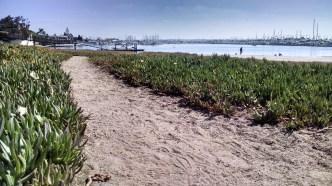 The beach walk begins