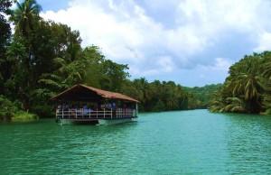 River Cruise in Bohol