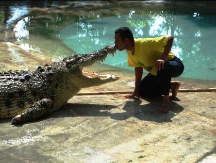 Crocodile Adventure Land, Langkawi
