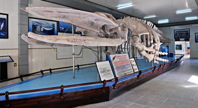 National Oceanographic Museum of Vietnam in Nha Trang