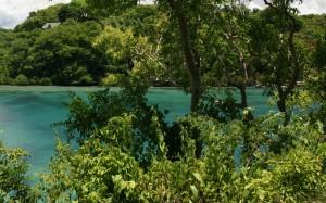 Bondong Jungle in Puerto Galera