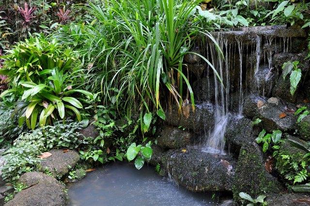 Tropical Spice Garden in Penang