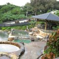 hot springs in taipei