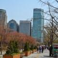 weather, korea, seoul