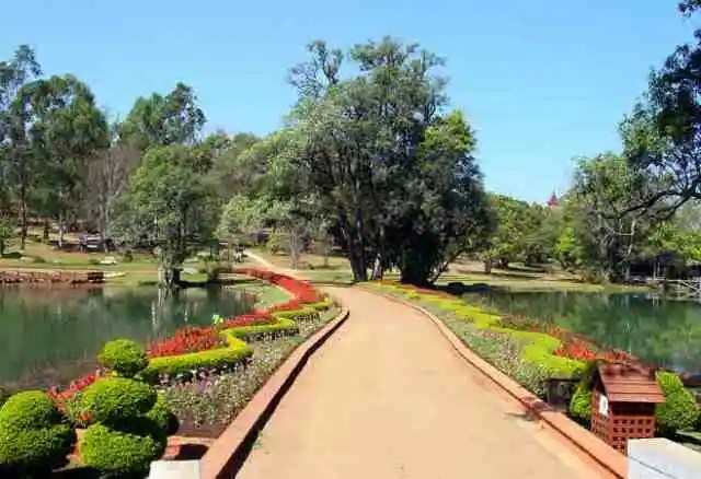 garden, myanmar, kandawgyi