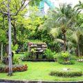 park, thailand, bangkok