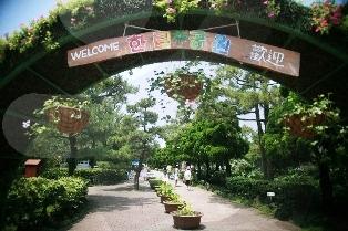 hallim park, korea, jeju-do