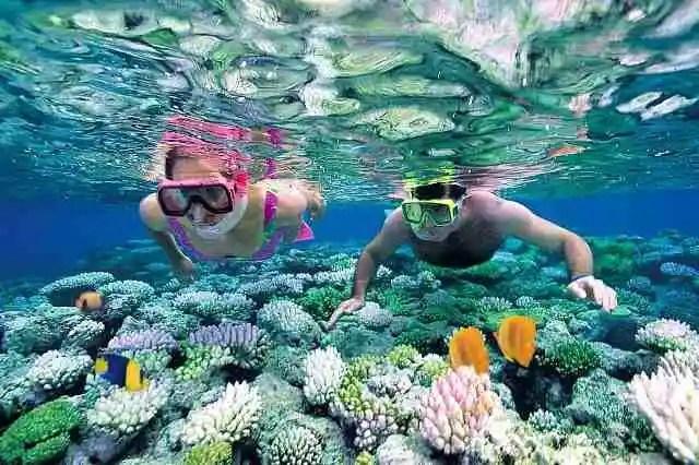 snorkeling, island activity, palawan