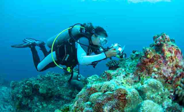 diving, krabi, thailand