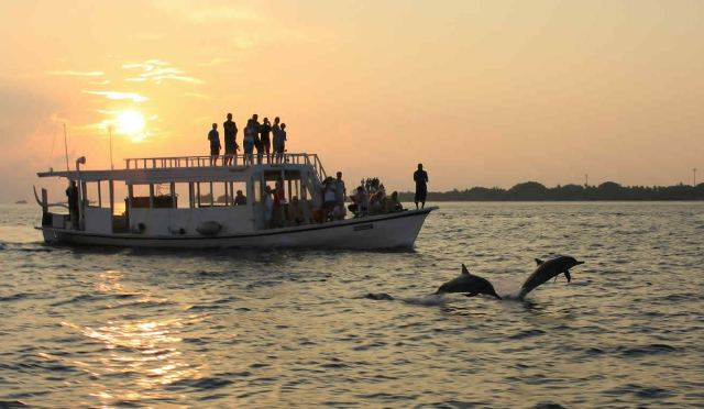 crusing, maldives, activity