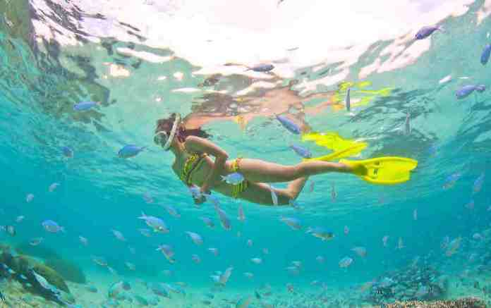 swimming, snorkeling, guam, pacific