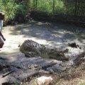 moitaka sanctuary, wildlife, papua new guinea