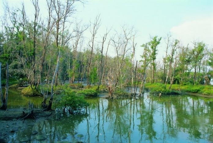 haomei village, nature reserve, chiayi