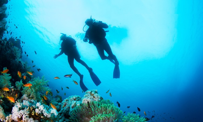 diving samui, diving thailand, samui