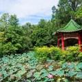 botanical garden, taipei, taiwan