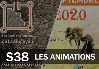Les animations du 14 au 20 septembre