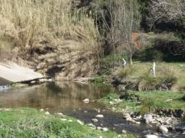 Riu Congost a Llerona - febrer de 2013