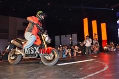 Honda MSX125 05