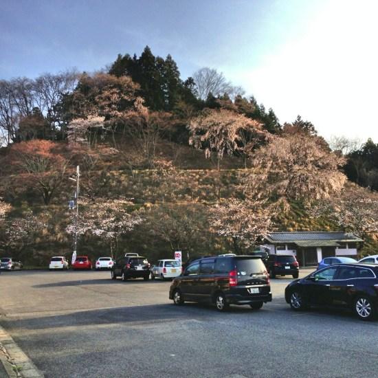 Yoshinoyama 05