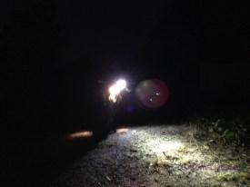 LEDlight 250SB 07