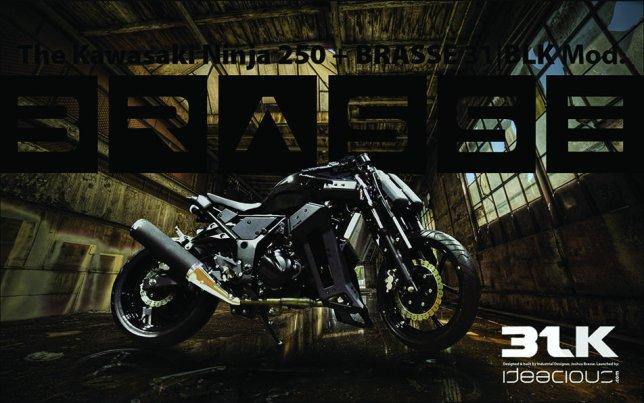 Ninja250 BRASS31BLKModkit 01