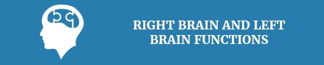 left-brain-vs-right-brain-right-brain-and-left-brain-functions
