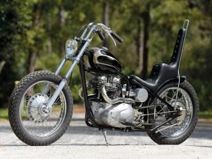 Wie aus einem Guss: Die Triumph konzentriert sich auf die Quintessenz eines Motorrades: Motor, Rahmen, Räder, Gabel