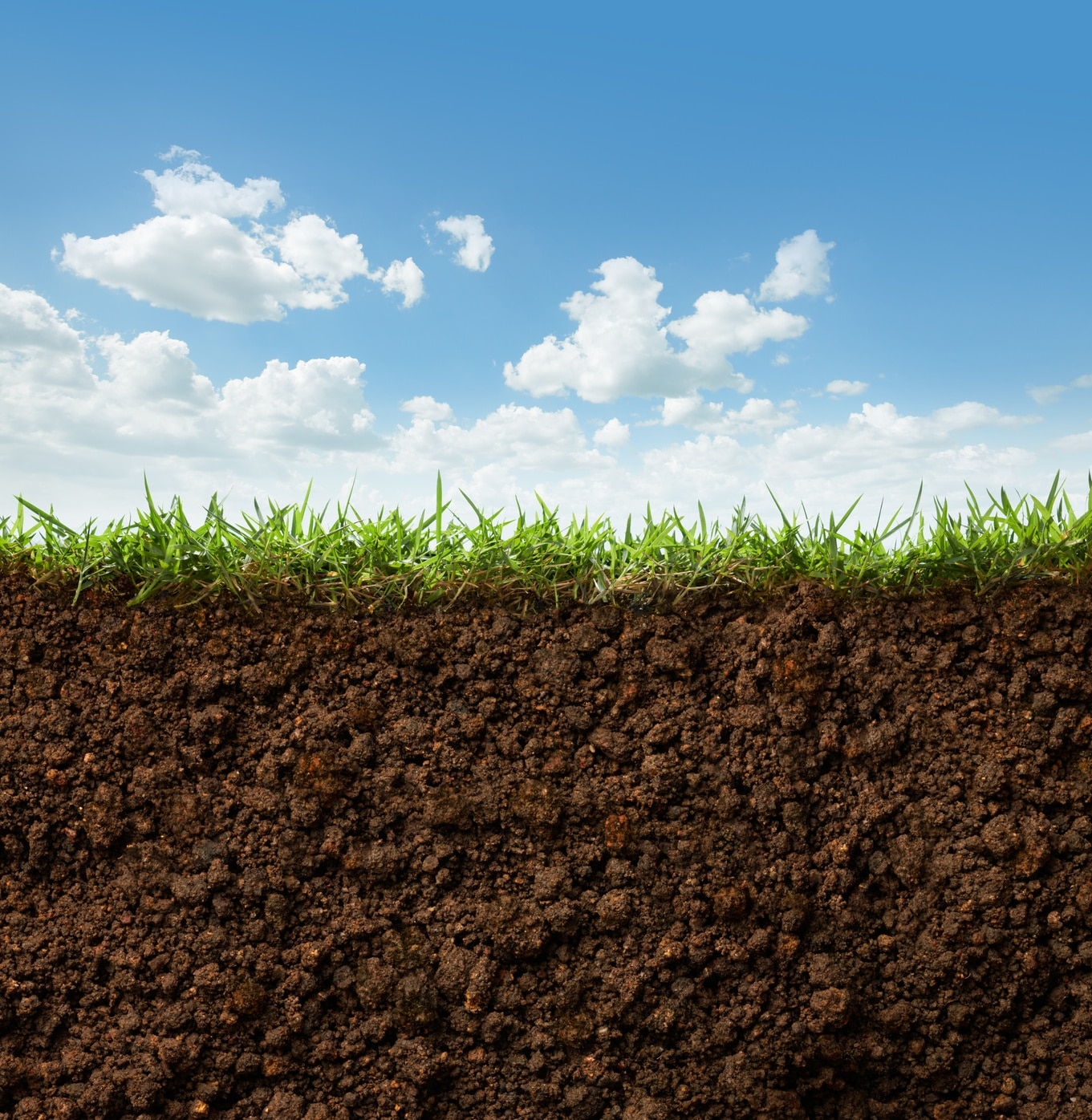 Soil Quality using Management Practices