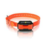dogtra-surestim-m-plus-orange-extra-dog-receiver-collar-l14207099