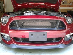 201517 Ford Mustang GT Mesh Grill Insert kit by