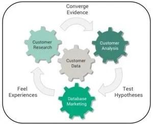 Customer Insight Ecosystem