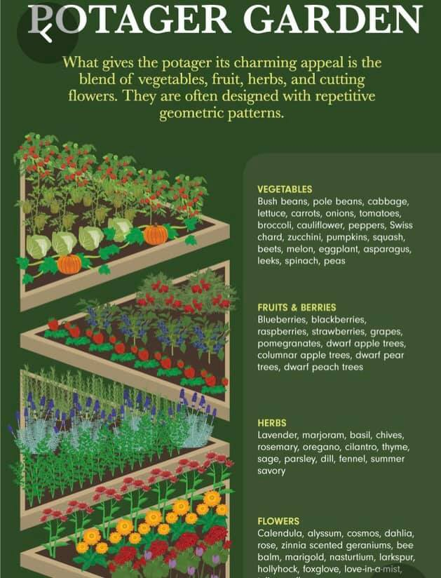 Potager Garden Plant types worksheet