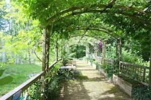 Summer Green Arbour
