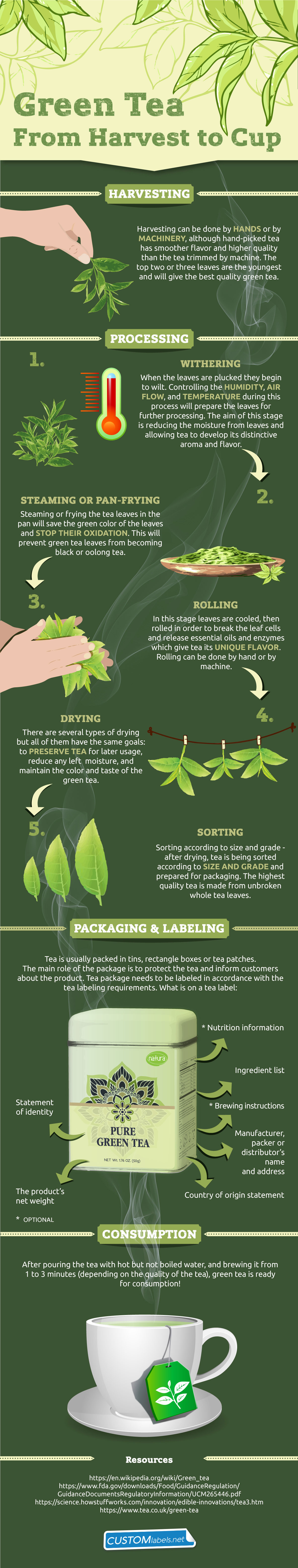 Green Tea Production Journey: From Harvest to Cup