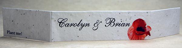 Invitation Supplies For Do It Yourself Wedding Invitations