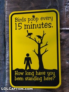 zoo sign bird poop
