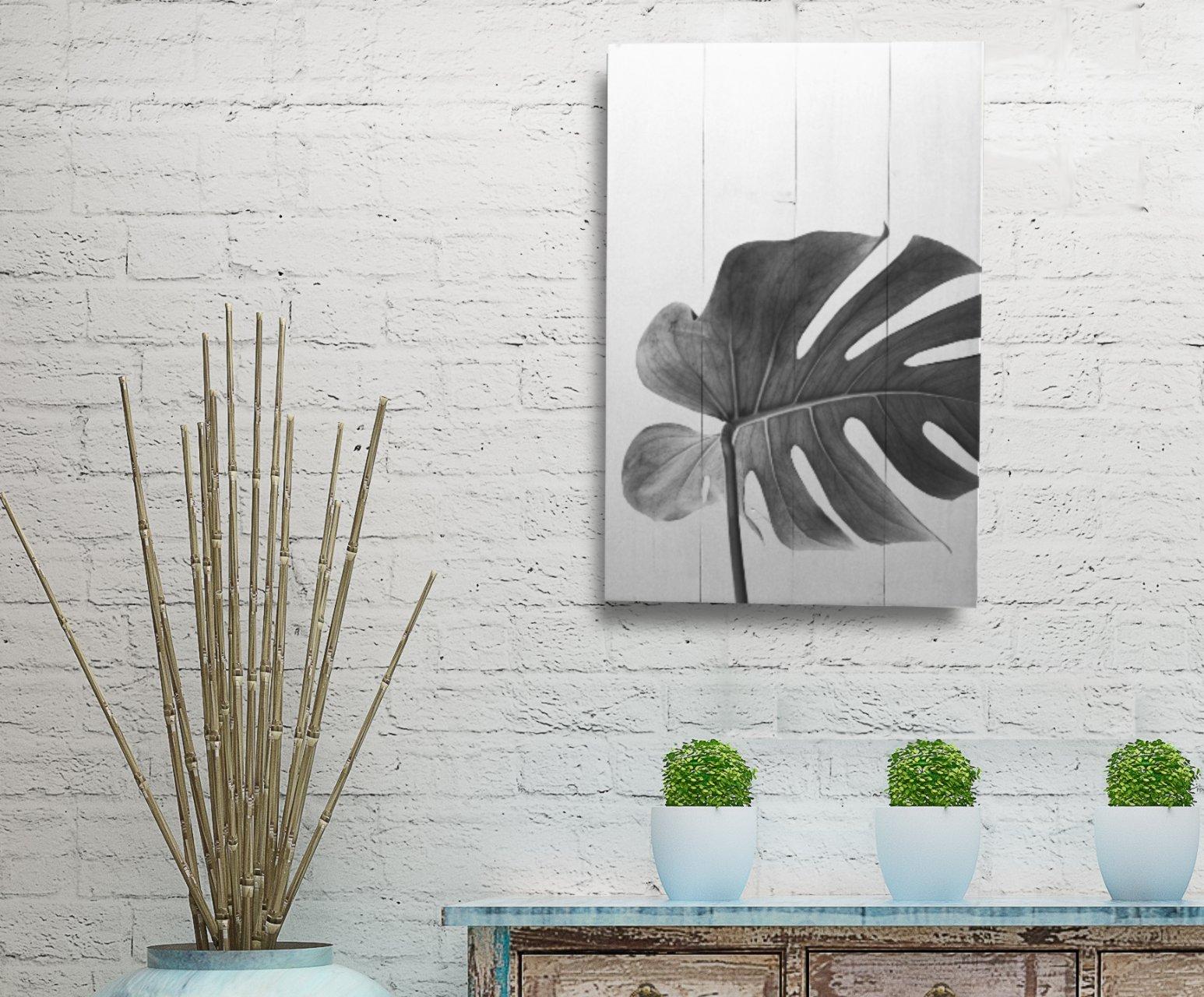 Cuadro plantas monstera en tabla de madera