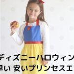apron001 - ディズニーハロウィン 子供の仮装にぴったり 〜 簡単 早い 安い「プリンセスエプロン」