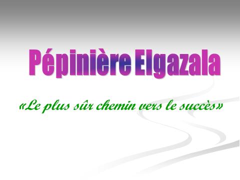 Pépinière Elgazala Tunisie