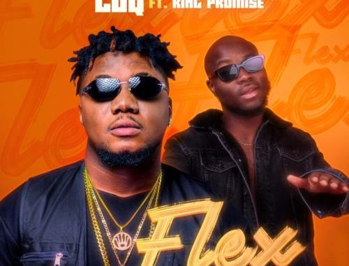 Download CDQ Flex Remix ft King Promise Mp3