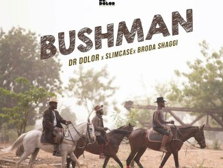 Dr Dolor - Bushman ft Slimcase x Broda Shaggi Mp3 Download