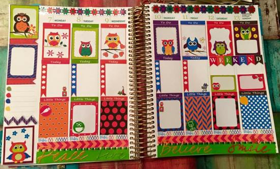 Colorful owls stickers in planner