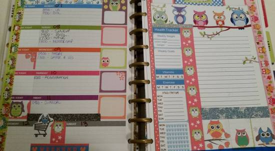 cute owl stickers used in planner