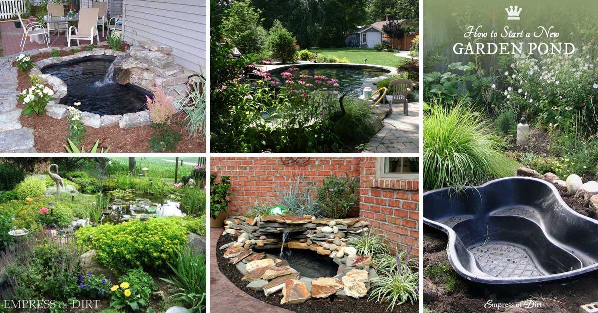 Cheap Pond Liner Ideas