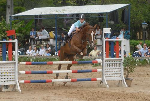 horses sport hobby horseriding dekita