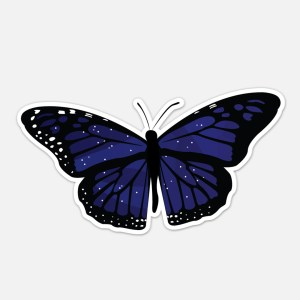 laptop butterfly sticker stars
