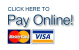 PayOnline-1