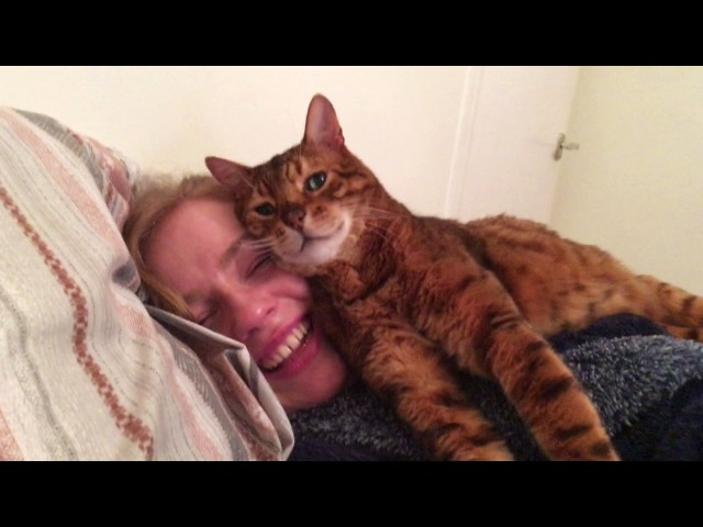 Tonto the Cat Approves Of His Human's New Girlfriend