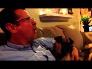 Yawning is Contagious Among Animals Funny Dog Video