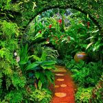 Plant Background Hd Posted By Samantha Thompson